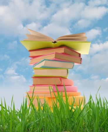 Stapel boeken op het gras Stockfoto