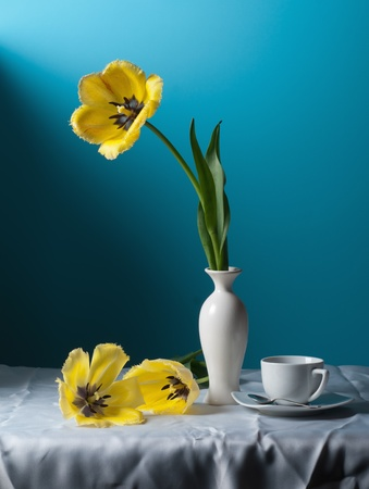 still water: Still life with yellow tulips