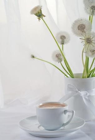 stillife: Stillife with dandelions