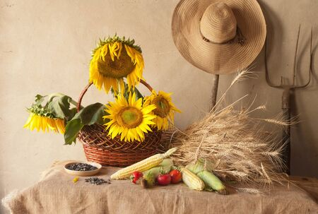 corn flower: still life with sunflowers, wheat and corn