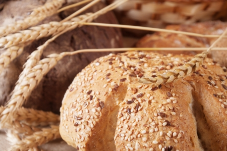 different types of bread Stock Photo - 16023860