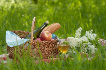 picnic setting on green grass photo