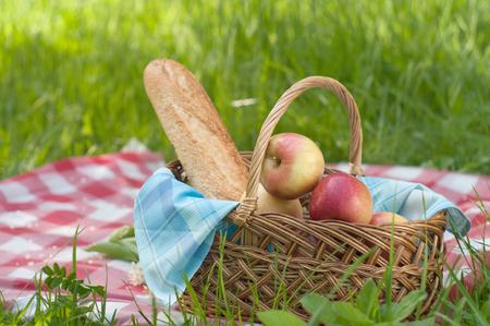 picnic setting on green grass photo