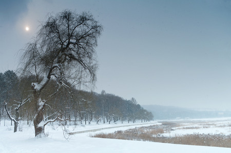 Winter landscape with falling snow photo