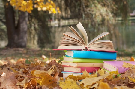 stack of books in the autumn park photo