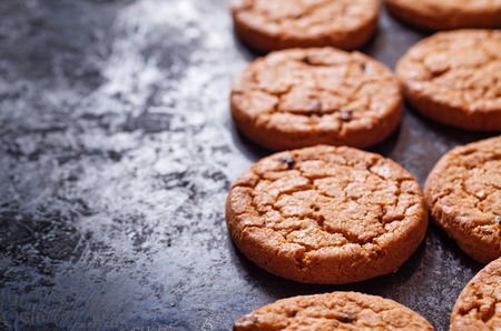 doughy: Gingersnap cookies for Christmas on a Baking Pan