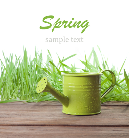 watering can on a grass background photo