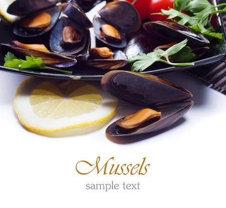 Fresh mussels photo