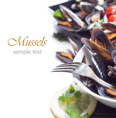 Fresh mussels photo