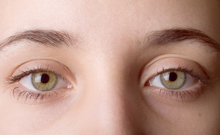 ojo humano: Imagen de macro de ojo humano