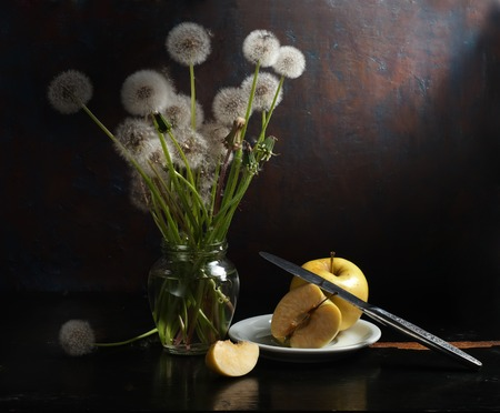 stillife: Stillife with dandelions
