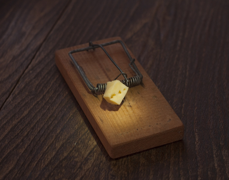 mousetrap: Mousetrap with cheese