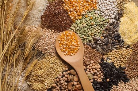 Raccolta cereali Archivio Fotografico - 52157416