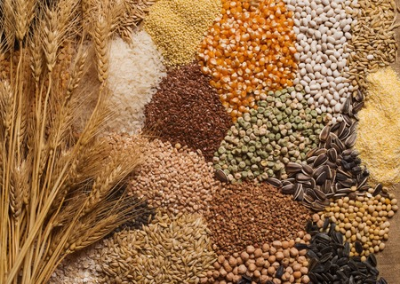 Cereal grains , seeds, beans 写真素材
