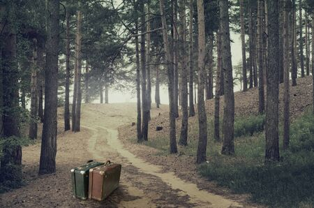 vintage travel: Two suitcases on road