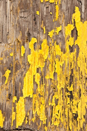 Exfoliate yellow paint on a scratched wood pole