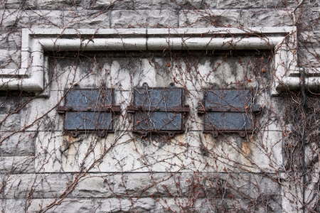 Architecture detail of an old ventilation system covered with branches of a wild ivy on an old building  Stock Photo