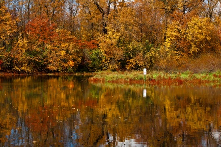 Fall full of colors forest with reflections in the mirror of the water and an indicator sign Stock Photo - 20556589