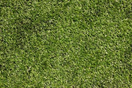 Artificial green grass pattern Stock Photo