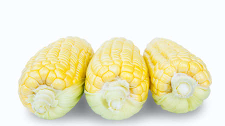 Sweet corn is delicious and ready to eat. Vegetables are beneficial to the body, have vitamins and delicious taste. on white background