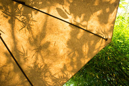 Shade of leaves , on yellow umbrella outdoor in the garden Stok Fotoğraf