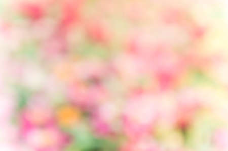 abstract colorful mix nature blur background