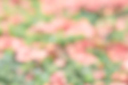 abstract nature color mix blur backgrund, color mix background Stock Photo