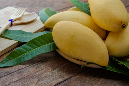Sweet yellow mango fruit  on wood table , ready to eat for healthy Stock Photo