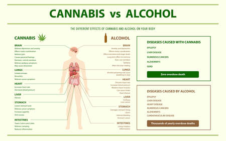 Cannabis vs Alcohol horizontal infographic illustration about cannabis as herbal alternative medicine and chemical therapy, healthcare and medical science vector.