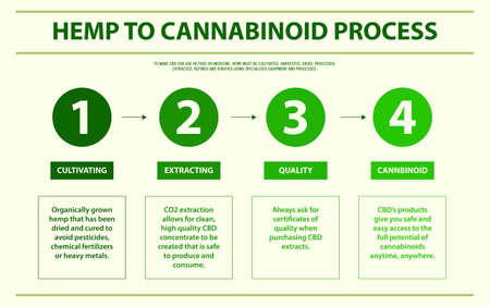 Hemp to Cannabinoid Process horizontal infographic illustration about cannabis as herbal alternative medicine and chemical therapy, healthcare and medical science vector.