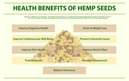 Health Benefits of Hemp Seeds horizontal infographic illustration about cannabis as herbal alternative medicine and chemical therapy, healthcare and medical science vector.
