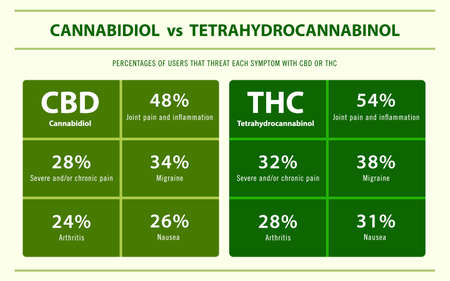 CBD vs THC Percentage of Users Treatment horizontal infographic illustration about cannabis as herbal alternative medicine and chemical therapy, healthcare and medical science vector.
