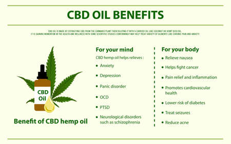 CBD Oil Benefits horizontal infographic illustration about cannabis as herbal alternative medicine and chemical therapy, healthcare and medical science vector.