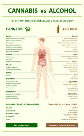 Cannabis vs Alcohol vertical infographic illustration about cannabis as herbal alternative medicine and chemical therapy, healthcare and medical science vector.