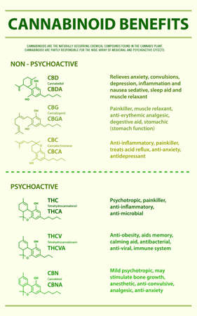 Cannabinoid Benefits vertical infographic illustration about cannabis as herbal alternative medicine and chemical therapy, healthcare and medical science vector. Stock Illustratie