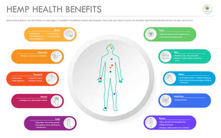 Hemp Health Benefits horizontal business infographic illustration about cannabis as herbal alternative medicine and chemical therapy, healthcare and medical science vector.