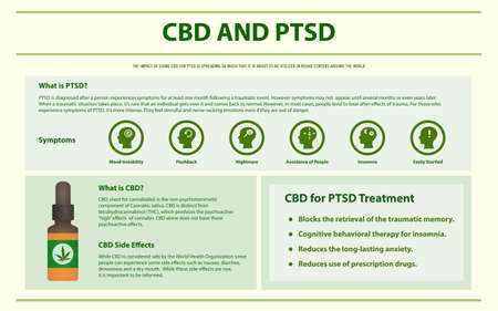 CBD and PTSD horizontal infographic illustration about cannabis as herbal alternative medicine and chemical therapy, healthcare and medical science vector.