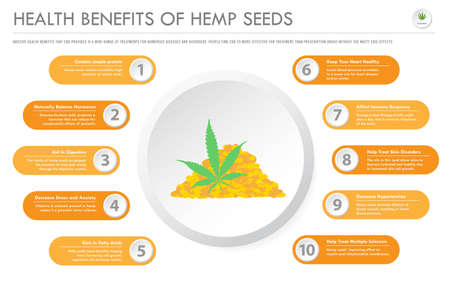 Health Benefits of Hemp Seeds horizontal business infographic illustration about cannabis as herbal alternative medicine and chemical therapy, healthcare and medical science vector. Banque d'images - 130837114