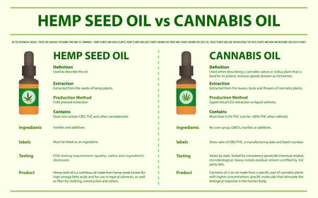 Hemp Seed Oil vs Cannabis Oil horizontal infographic illustration about cannabis as herbal alternative medicine and chemical therapy, healthcare and medical science vector.