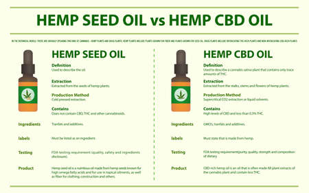Hemp Seed Oil vs Hemp CBD Oil horizontal infographic illustration about cannabis as herbal alternative medicine and chemical therapy, healthcare and medical science vector.  イラスト・ベクター素材