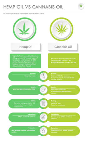 Hemp Oil vs Cannabis Oil vertical business infographic illustration about cannabis as herbal alternative medicine and chemical therapy, healthcare and medical science vector.