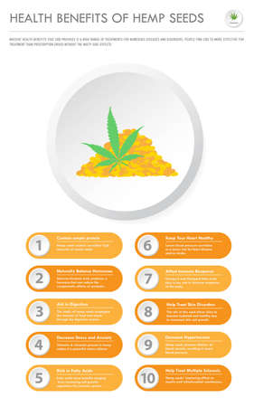 Health Benefits of Hemp Seeds vertical business infographic illustration about cannabis as herbal alternative medicine and chemical therapy, healthcare and medical science vector.