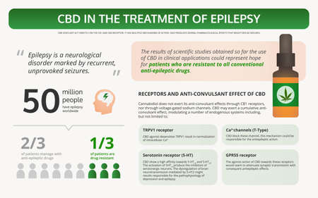 Cannabis in the Treatment of Epilepsy horizontal textbook infographic illustration about cannabis as herbal alternative medicine and chemical therapy, healthcare and medical science vector.