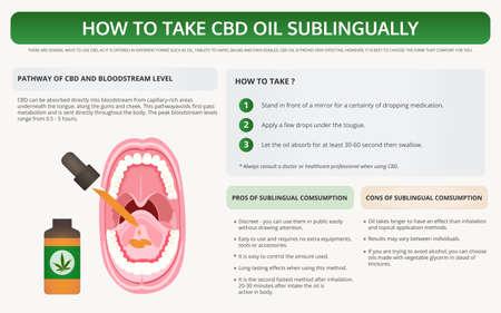 Wie man CBD-Öl sublingual einnimmt, horizontale Lehrbuch-Infografik über Cannabis als pflanzliche Alternativmedizin und chemische Therapie, Gesundheitswesen und medizinischer Wissenschaftsvektor.