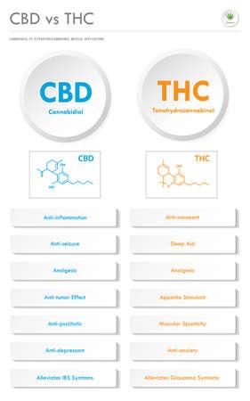 CBD vs THC Medical Applications ilustración de infografía comercial vertical sobre el cannabis como medicina alternativa a base de hierbas y terapia química, salud y vector de ciencia médica.