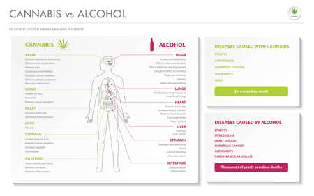Cannabis vs Alcohol horizontal business infographic illustration about cannabis as herbal alternative medicine and chemical therapy, healthcare and medical science vector.