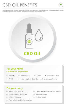 CBD Oil Benefits vertical business infographic illustration about cannabis as herbal alternative medicine and chemical therapy, healthcare and medical science vector.