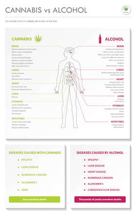 Cannabis vs Alcohol vertical business infographic illustration about cannabis as herbal alternative medicine and chemical therapy, healthcare and medical science vector.