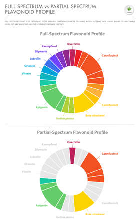 Full Spectrum vs Partial Spectrum Flavonoid Profile vertical business infographic illustration about cannabis as herbal alternative medicine and chemical therapy, healthcare and medical science vector. Illustration