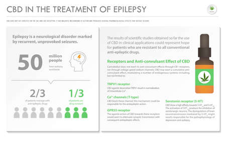 CBD in the Treatment of Epilepsy horizontal business infographic illustration about cannabis as herbal alternative medicine and chemical therapy, healthcare and medical science vector.